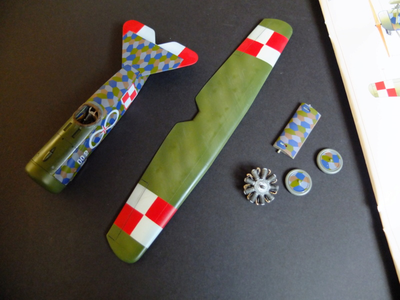 Le parasol de Fokker - Page 2 Dscf5715