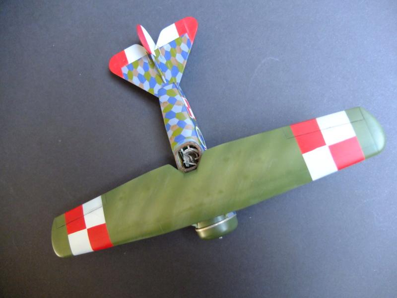 Le parasol de Fokker - Page 2 Dscf5718