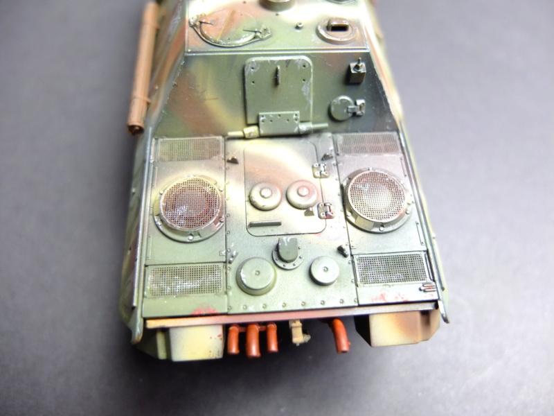 Jagdpanther, le chasseur de chars... Dscf5915