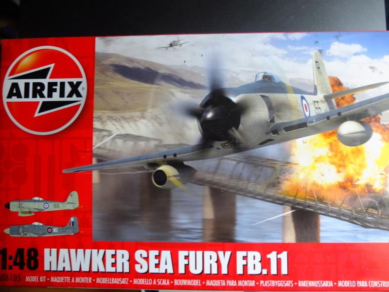 Sea Fury et ronds de fumée... Dscf6019
