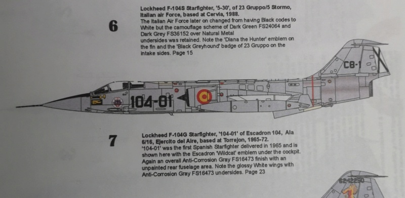 F 104 espagnol Hasegawa 1/48 Img_2135