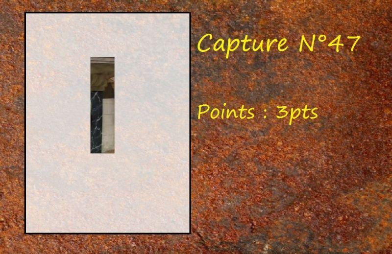 La Capture d'Image - Jeu à durée indéterminée  - Page 10 Capt4710