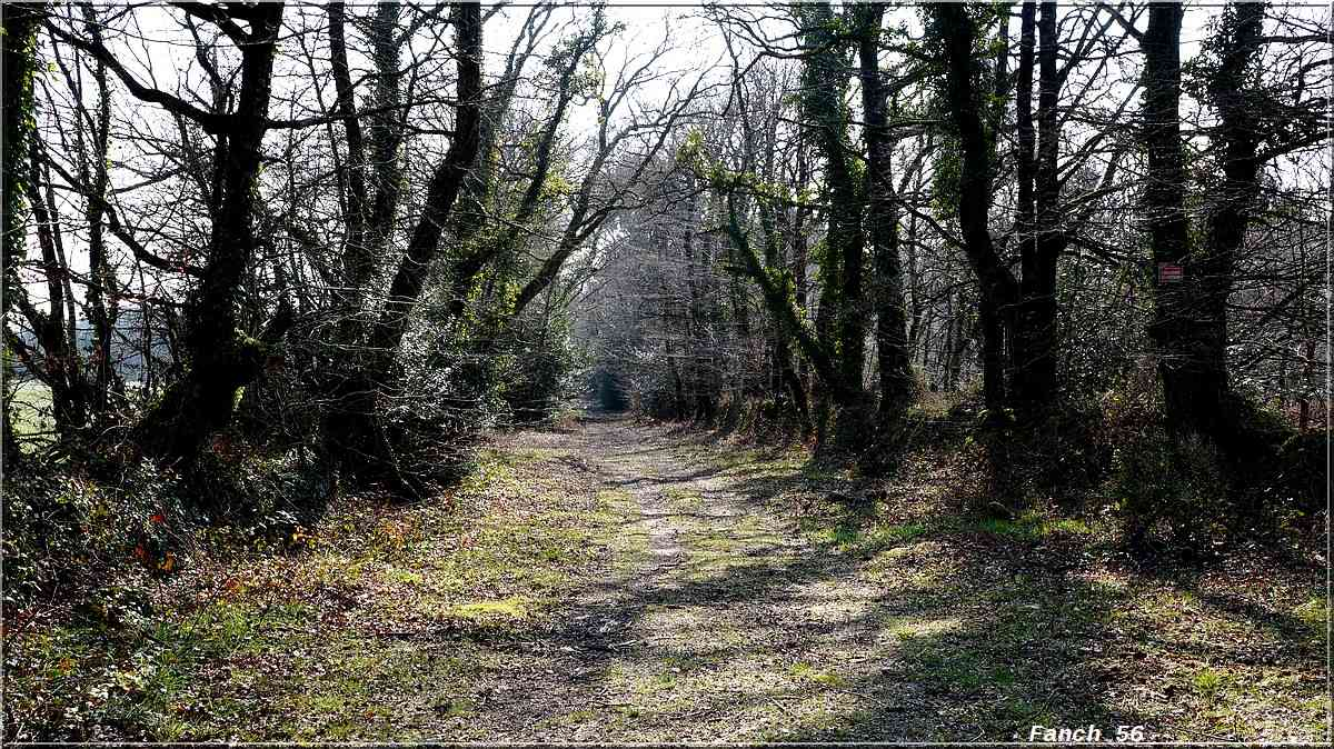 Balade à Langonbrac'h (Commune de Landaul). Langon15