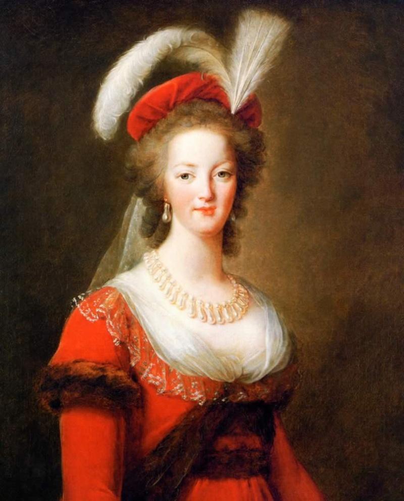 Cheveux de Marie-Antoinette Lebrun10