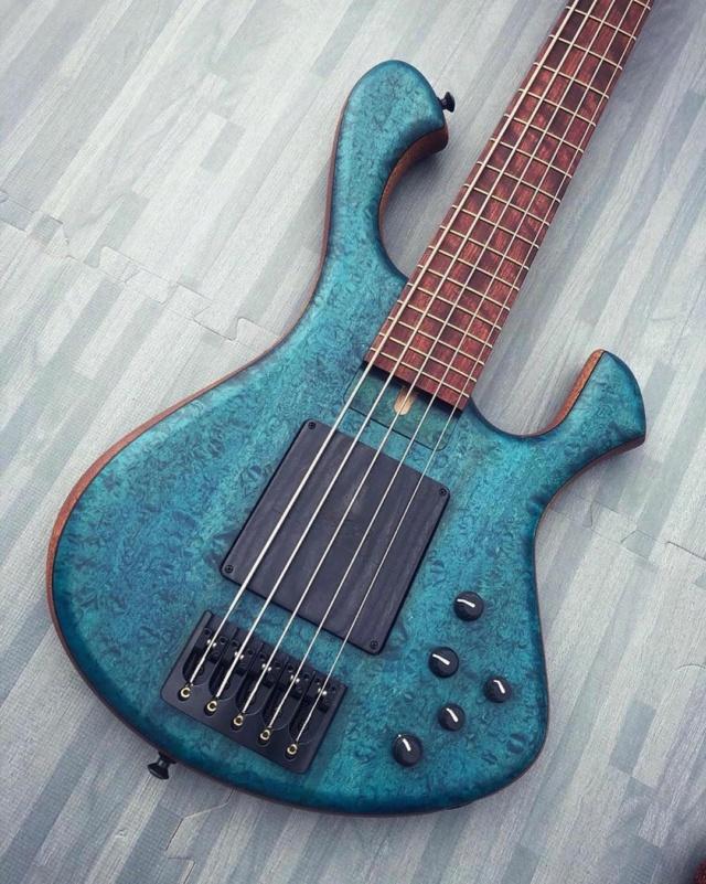 Skjold basses 17854910