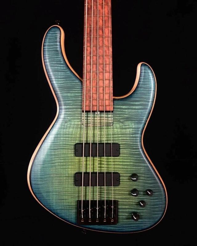 Skjold basses 17956510