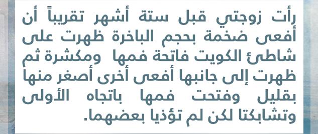 المجوس والفرس في الكويت Vzpvqr10