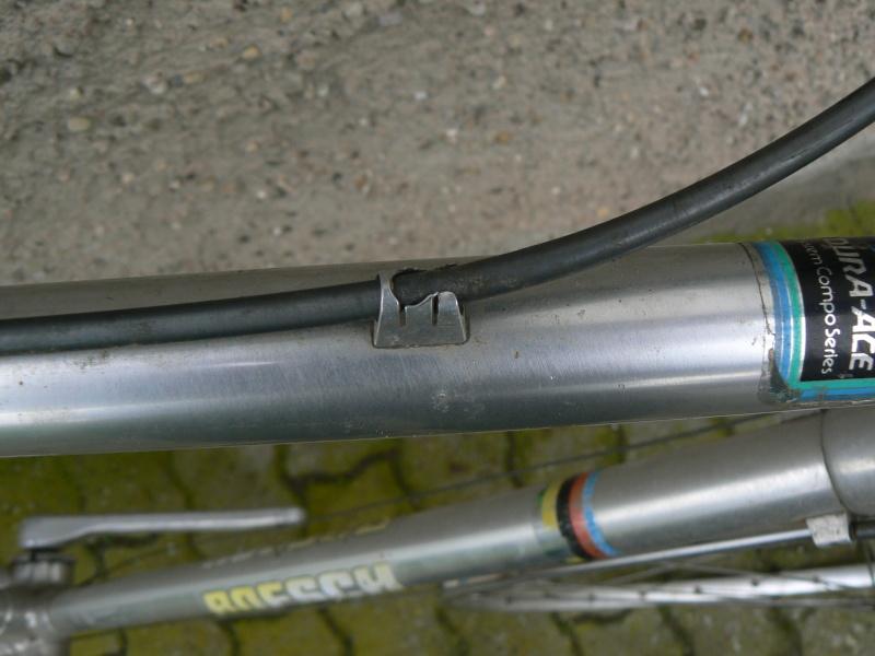 Alan - Cyclo Cross - P1050323