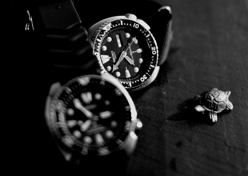 Votre montre du jour - Page 30 Seiko_10