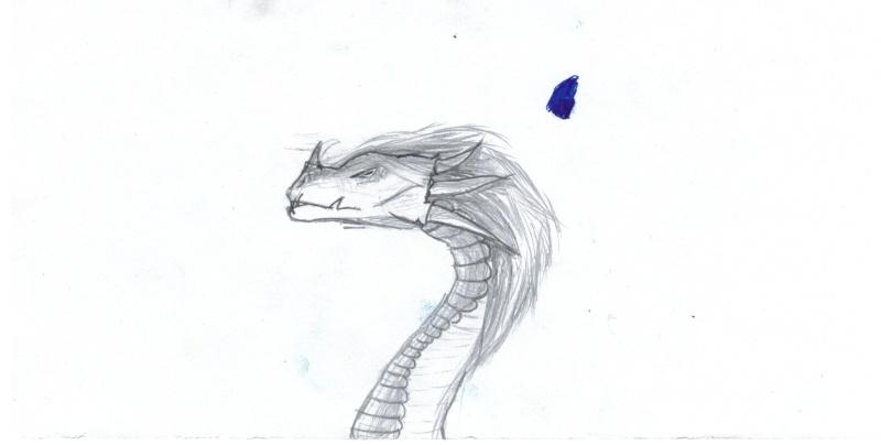 Dessins de Nyklaus - Page 2 Dragon10
