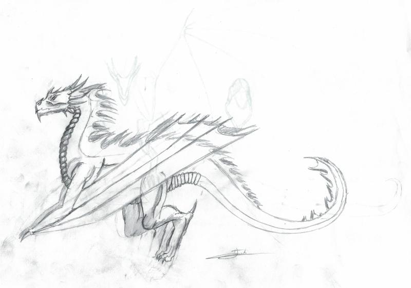 Dessins de Nyklaus - Page 2 Dragon11