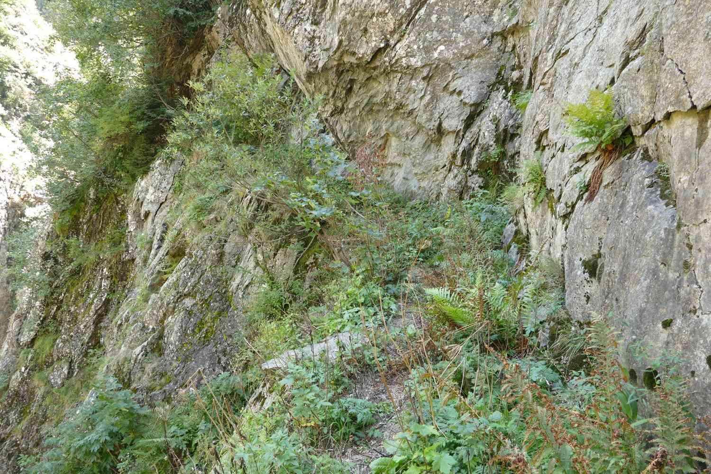 Sentiers oubliés P1311