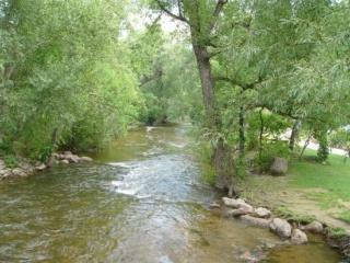 The Rapids Creek Creek_10