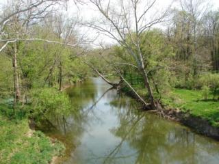 The Marsh Creek Marsh_11