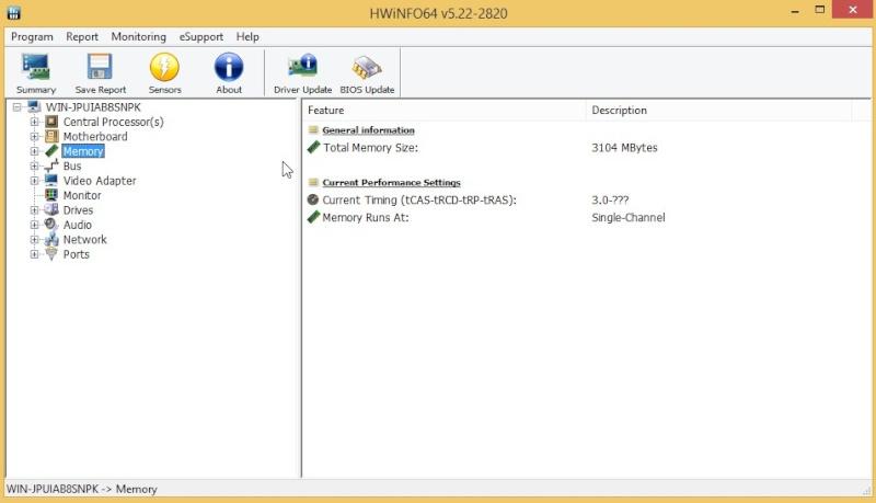 HWiNFO64 6.06 Build 3770 2010