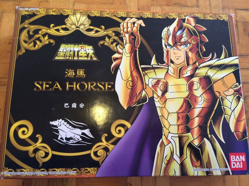 Cavallo Del Mare \ Sea Horse Img_0317