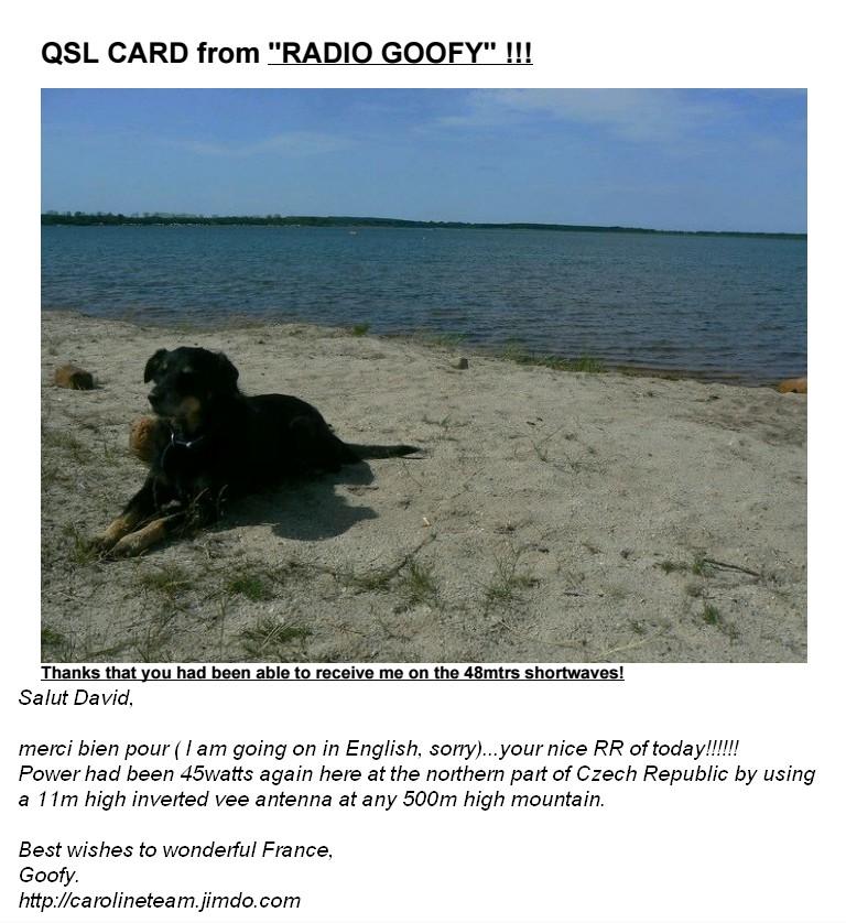 eQSL de Radio Goofy Radio_19