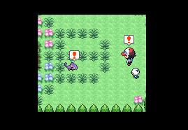 (a ne pas encore voir) P G-A - Chapitre 3 - Capture du premier Pokémon! Chapit15