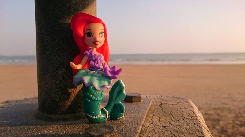 Figurines Little Kingdom (Hasbro) - Page 4 12325710
