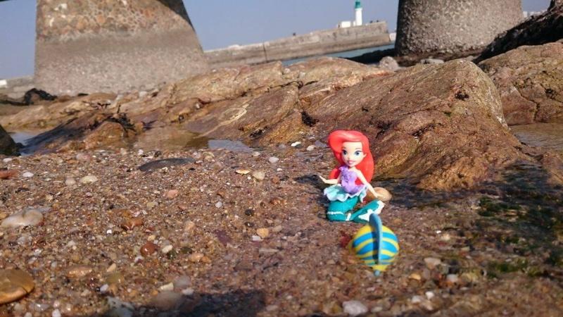 Figurines Little Kingdom (Hasbro) - Page 4 12873410