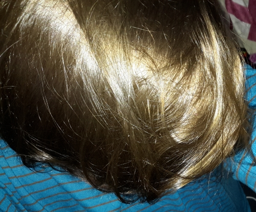 Sante Naturkosmetik Pflanzen-Haarfarbe Haarev10