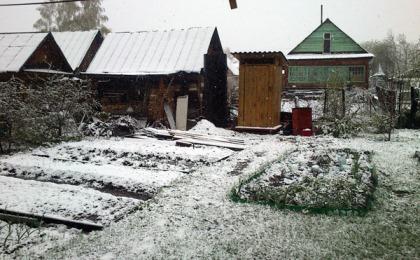 Что делать в саду и на огороде в марте 14567311