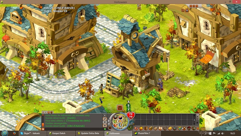 "[Maj-Beta] Dofus en grand, la beta ""long terme"" Scr210"