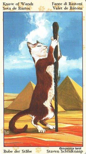 Tarot of Pagan Cats 1112