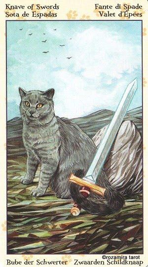 Tarot of Pagan Cats 1113