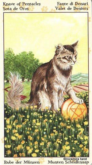 Tarot of Pagan Cats 1114