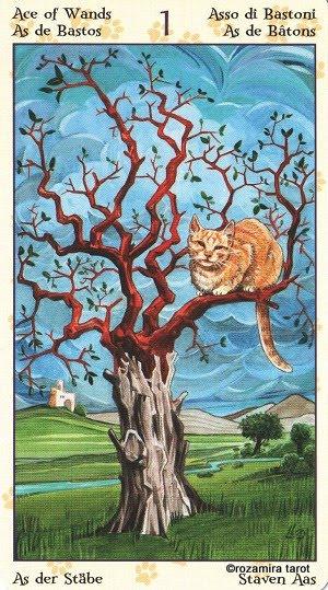 Tarot of Pagan Cats 113