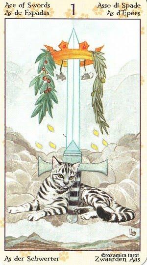 Tarot of Pagan Cats 114