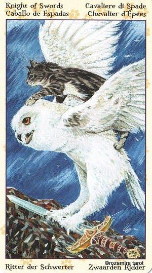 Tarot of Pagan Cats 1214