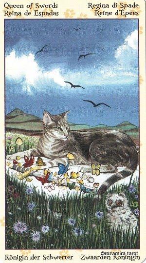 Tarot of Pagan Cats 1314
