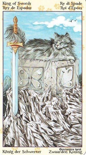 Tarot of Pagan Cats 1414