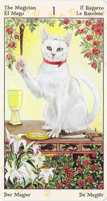 Tarot of Pagan Cats 22070211