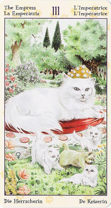 Tarot of Pagan Cats 22070213