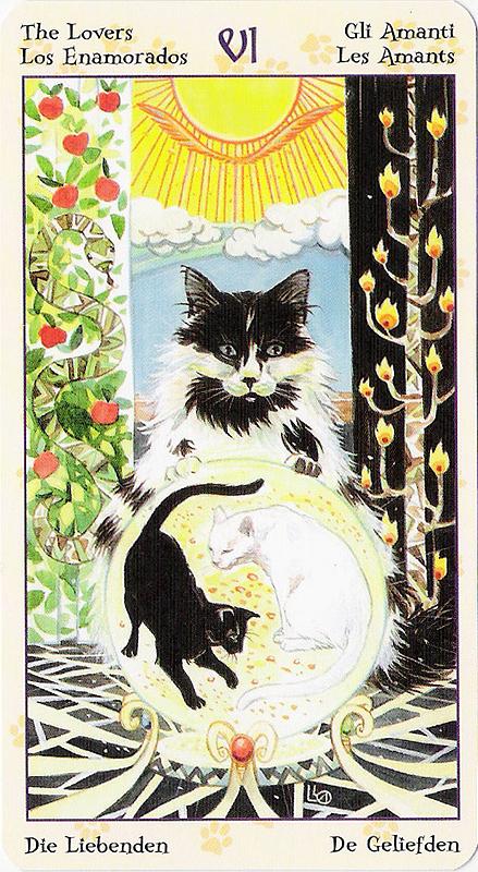 Tarot of Pagan Cats 22070216