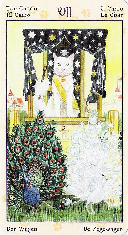 Tarot of Pagan Cats 22070217