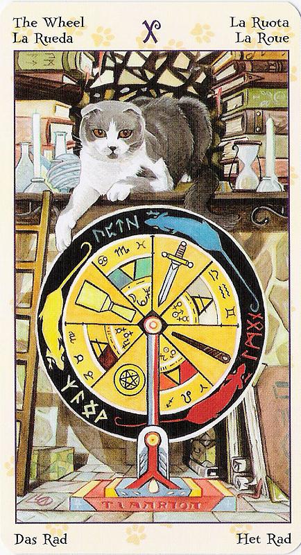 Tarot of Pagan Cats 22070220