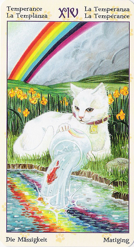 Tarot of Pagan Cats 22070224