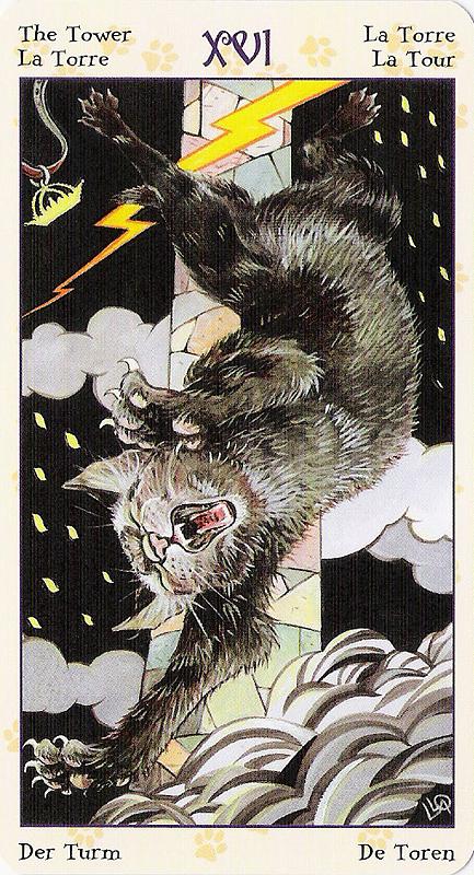 Tarot of Pagan Cats 22070226