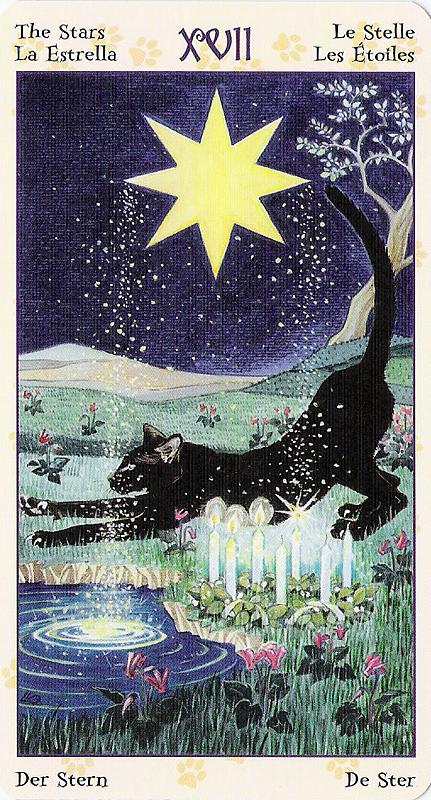 Tarot of Pagan Cats 22070227