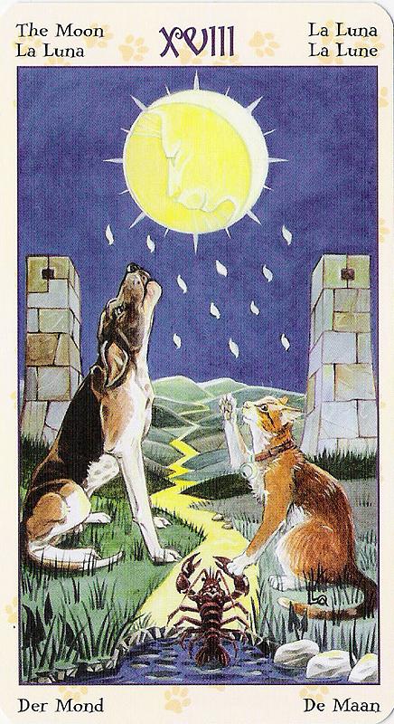 Tarot of Pagan Cats 22070228