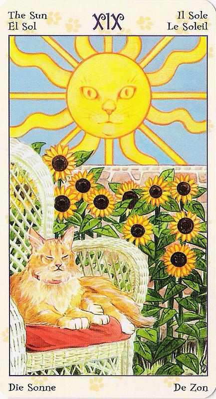 Tarot of Pagan Cats 22070229