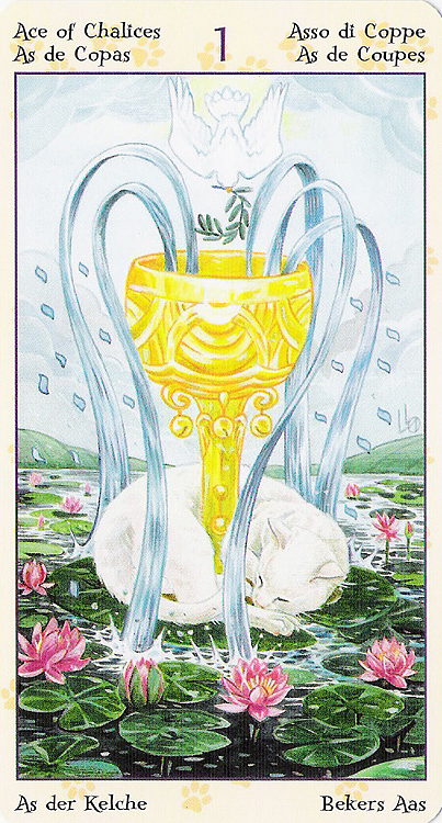Tarot of Pagan Cats 22266910