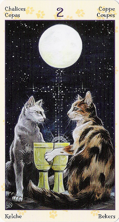 Tarot of Pagan Cats 22266911