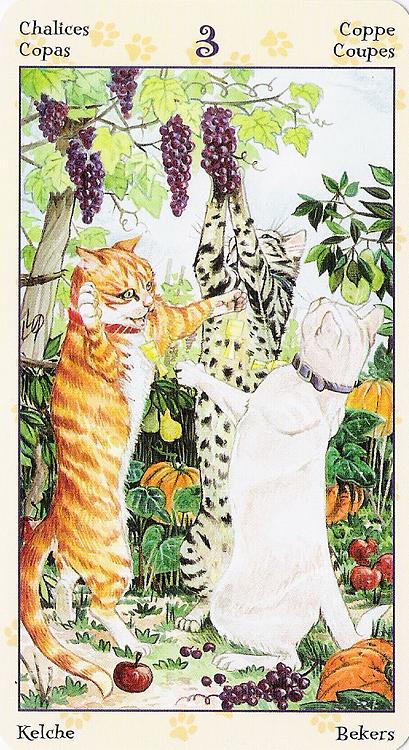 Tarot of Pagan Cats 22266912