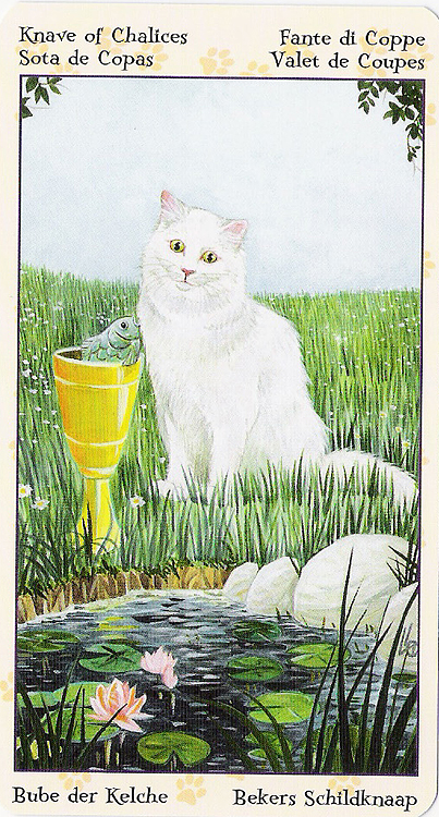 Tarot of Pagan Cats 22266920