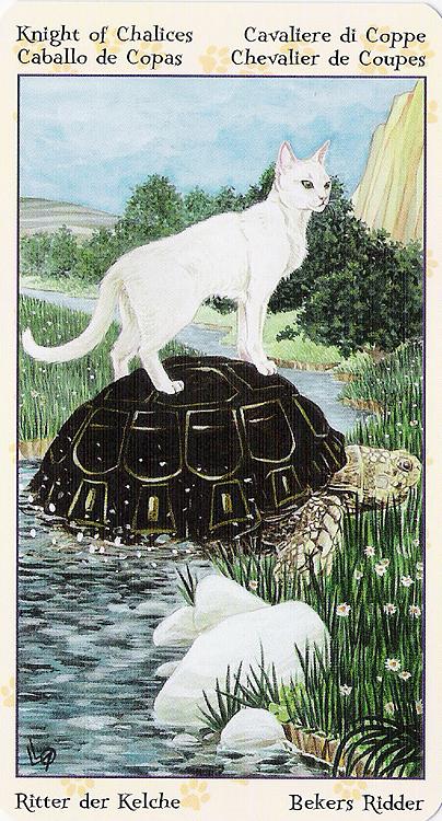 Tarot of Pagan Cats 22266921